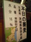 027武蔵国分寺潮.JPG