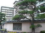 035稲取銀水荘.JPG